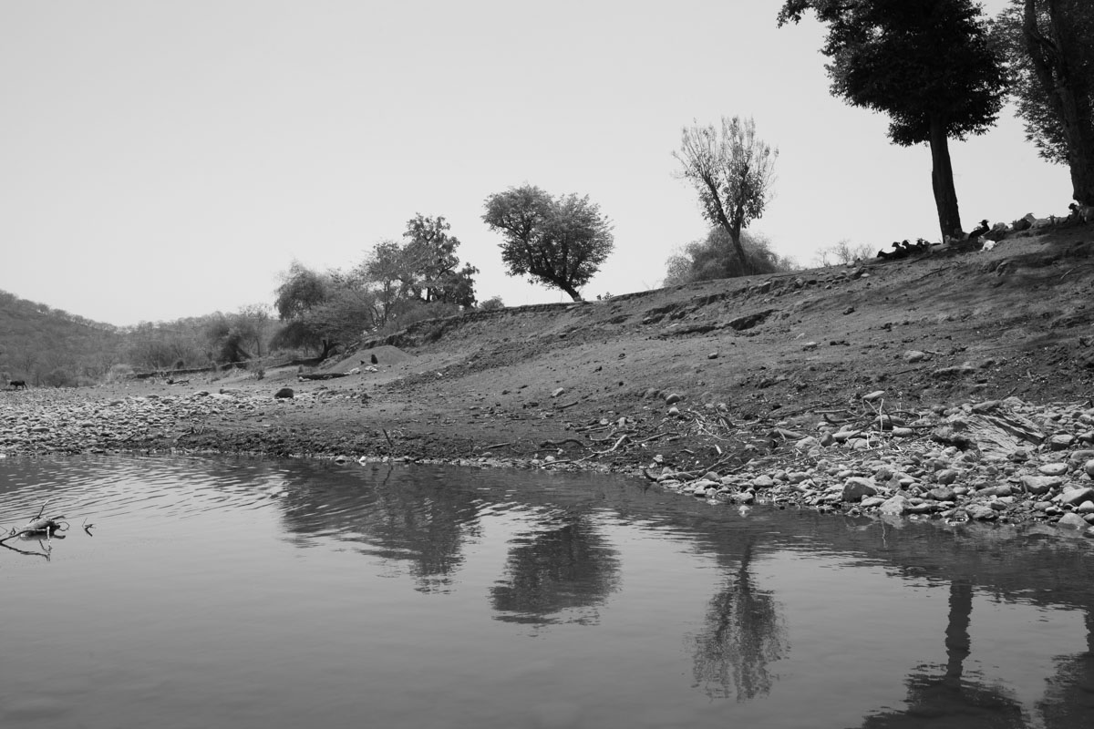 Wild nature of Ethiopia in black and white - part ii