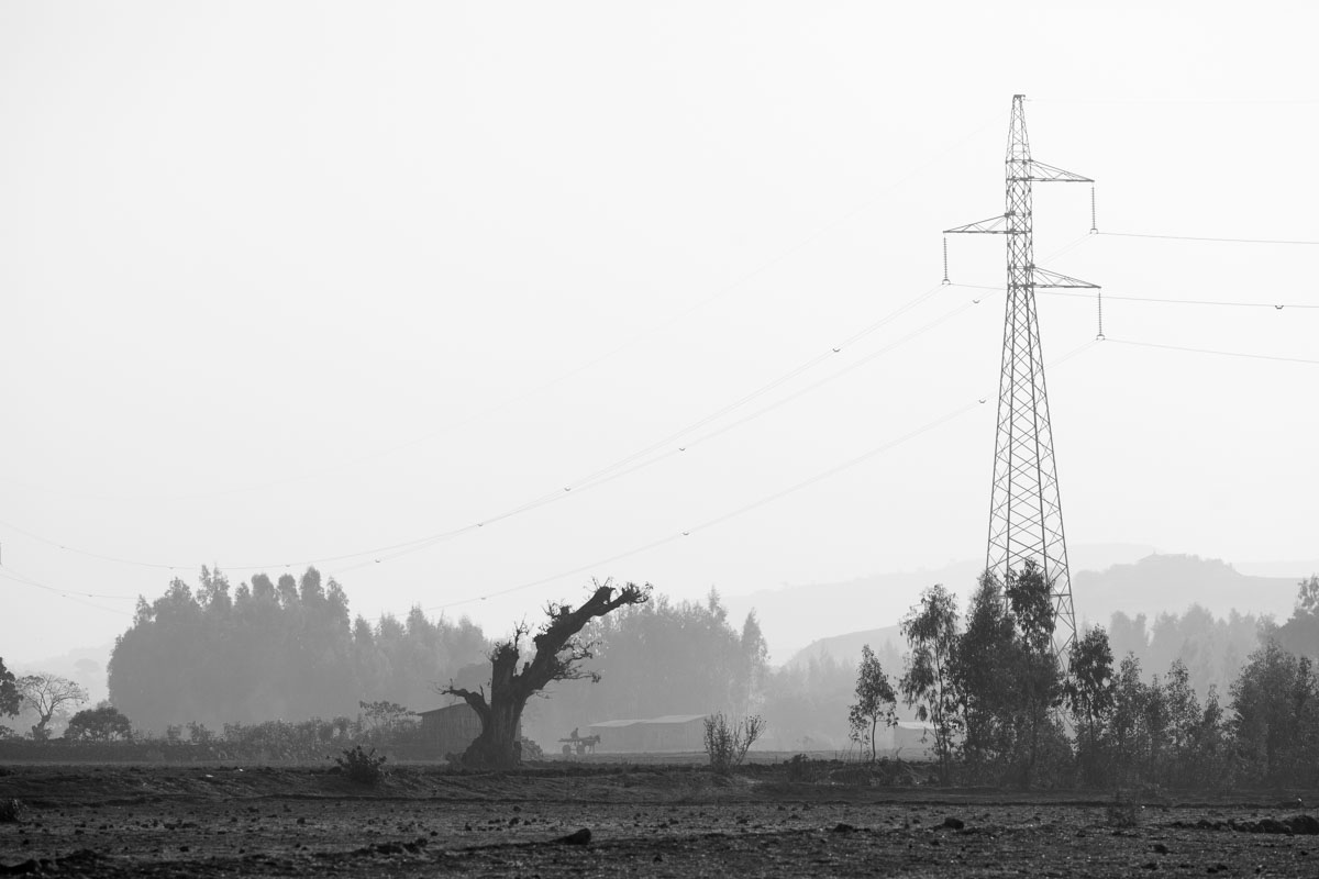 Wild nature of Ethiopia in black and white - part i