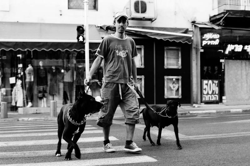 street-album-16