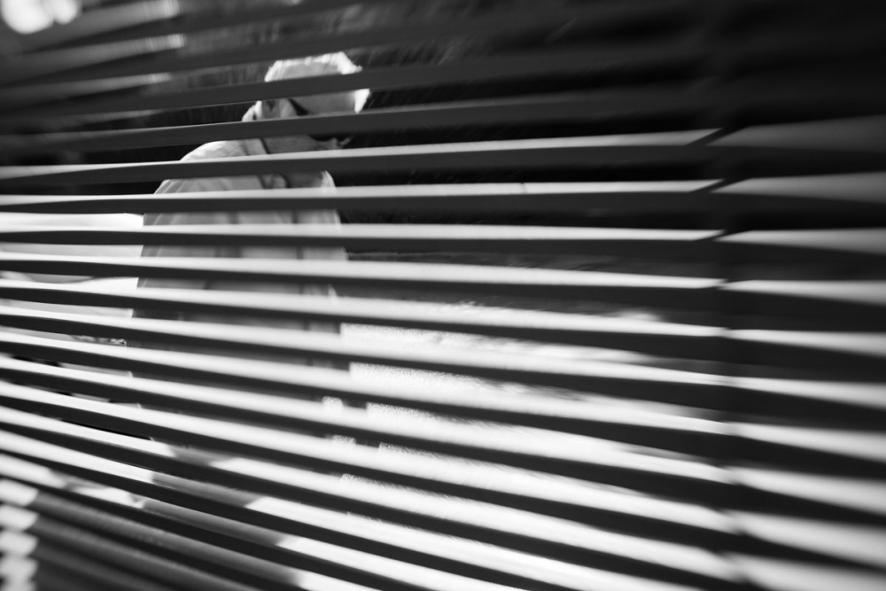 Lensbaby_fence