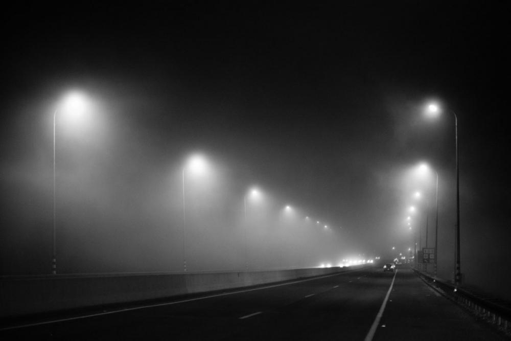 foggy_road