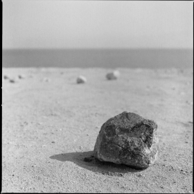 alive stone of DeadSea