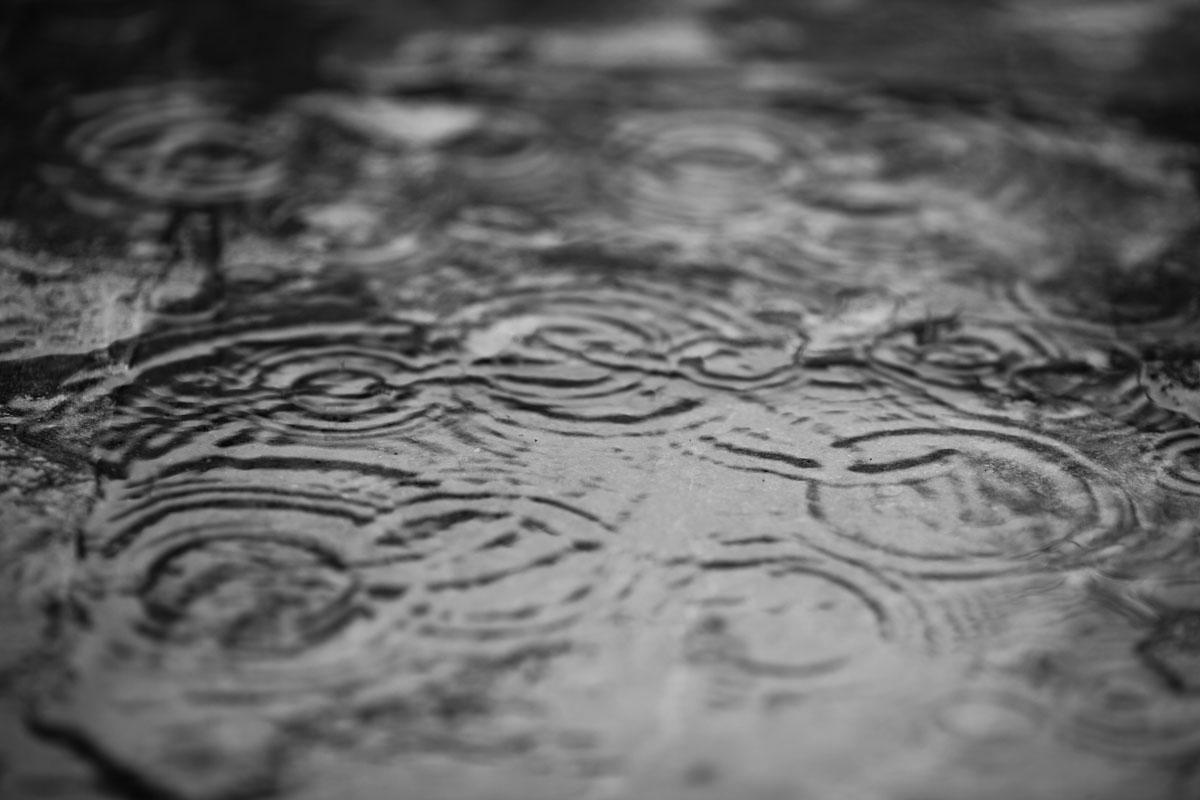 Rainy Day People Gordon Lightfoot Lyrics
