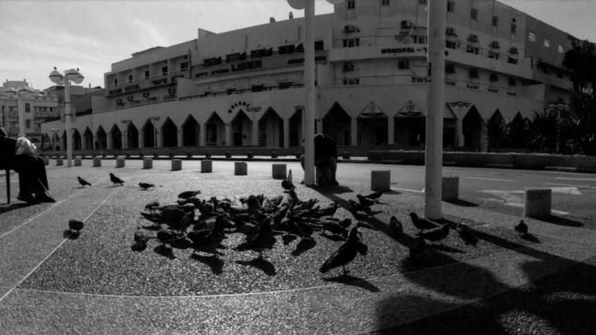 Horizon202-exposes-T-max-Fomapan-and-Kentmere