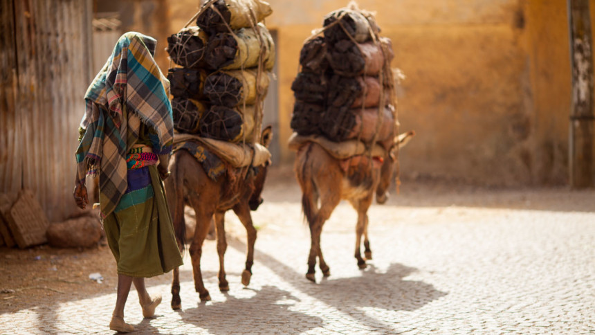 Ethiopia-people-animals-and-transport