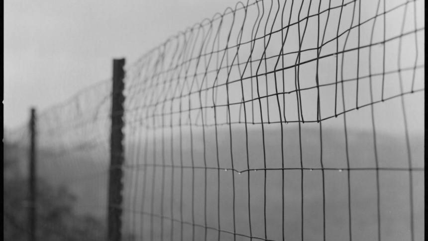 rainy-fence